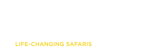 Yellow Zebra Safaris - Home