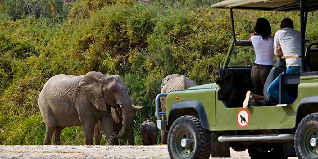 0 AC elephant jeep