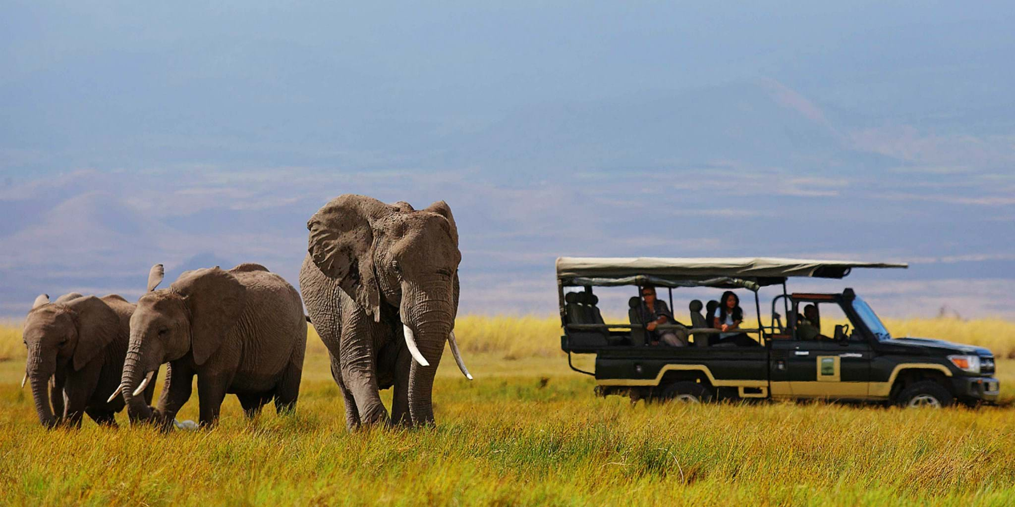 3 Days Amboseli By Air