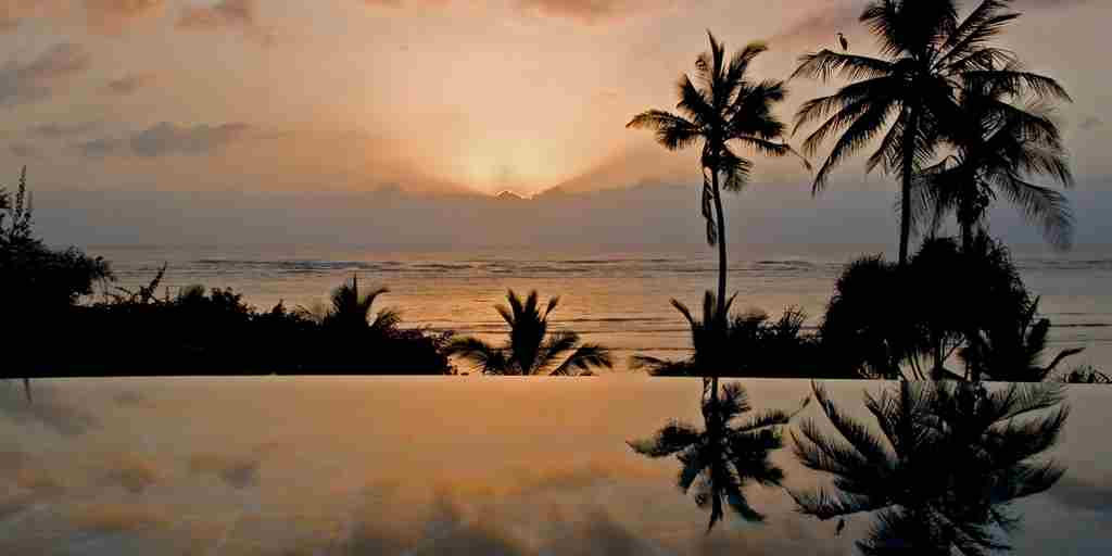 10-Alfajiri palm heron pool sunrise.jpg