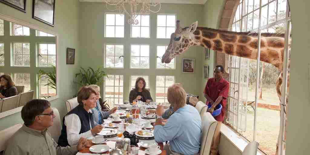 Giraffe Manor - breakfast with giraffes.jpg