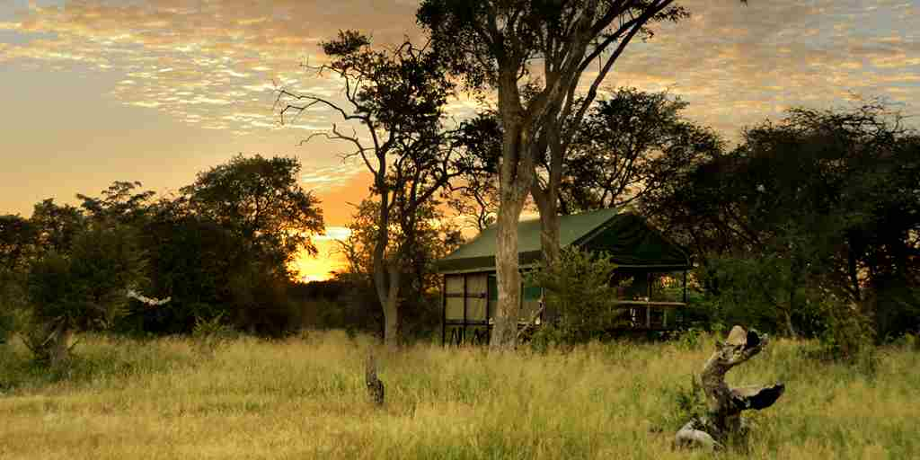 18. Imvelo Safari Lodges - Bomani Tented Lodge - Hornbill Tent at sunrise.jpg
