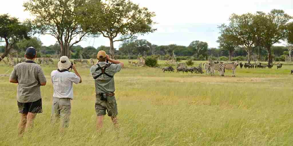 23. Imvelo Safari Lodges   Camelthorn Lodge   The plains are great walking country