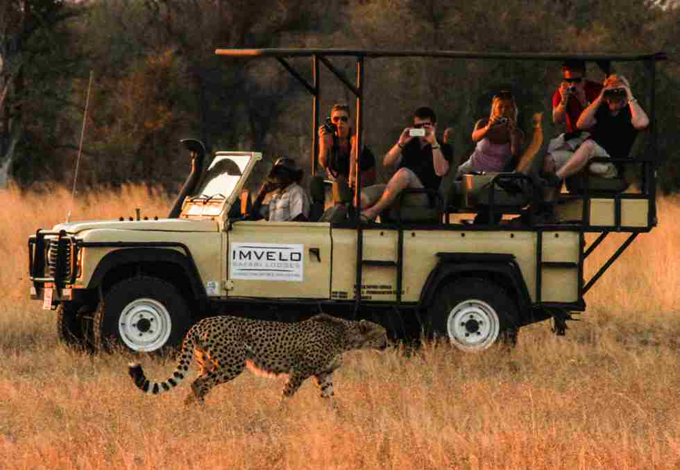 26. Imvelo Safari Lodges -  Sunday evening near Bomani with Stacey and the Dudeman Jones Family.jpg