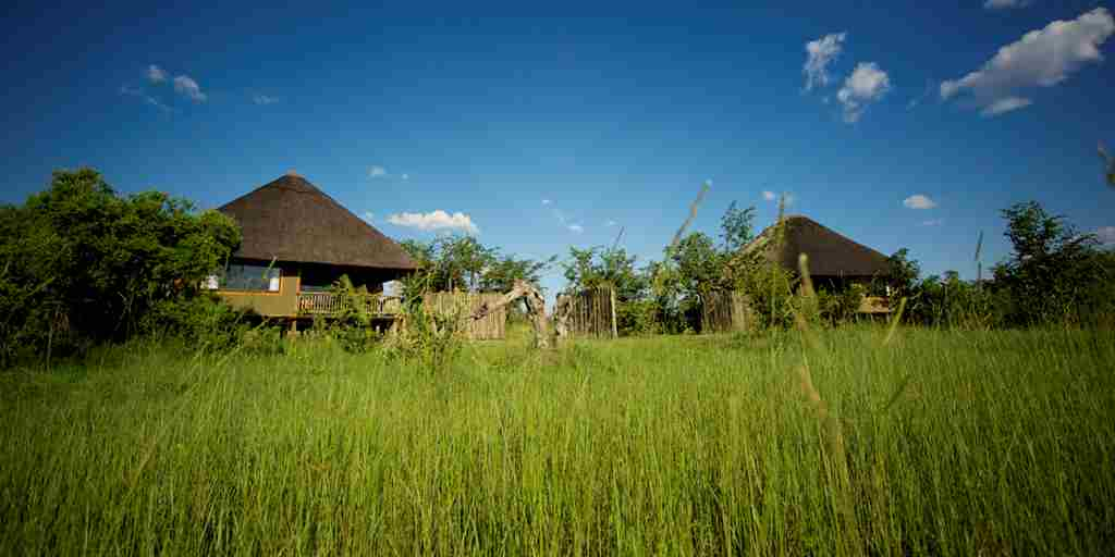 6. Imvelo Safari Lodges   Nehimba  Green Season