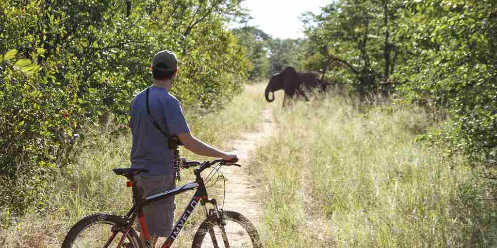 4---mountain-biking-on-elephant-tracks-at-jozi.jpg