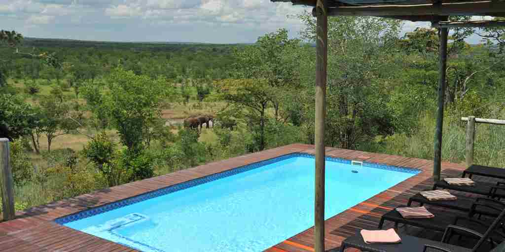 THE ELEPHANT CAMP MAIN POOL.JPG