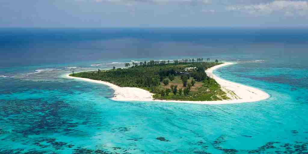 Aerial View of Bird Island.ii.jpg