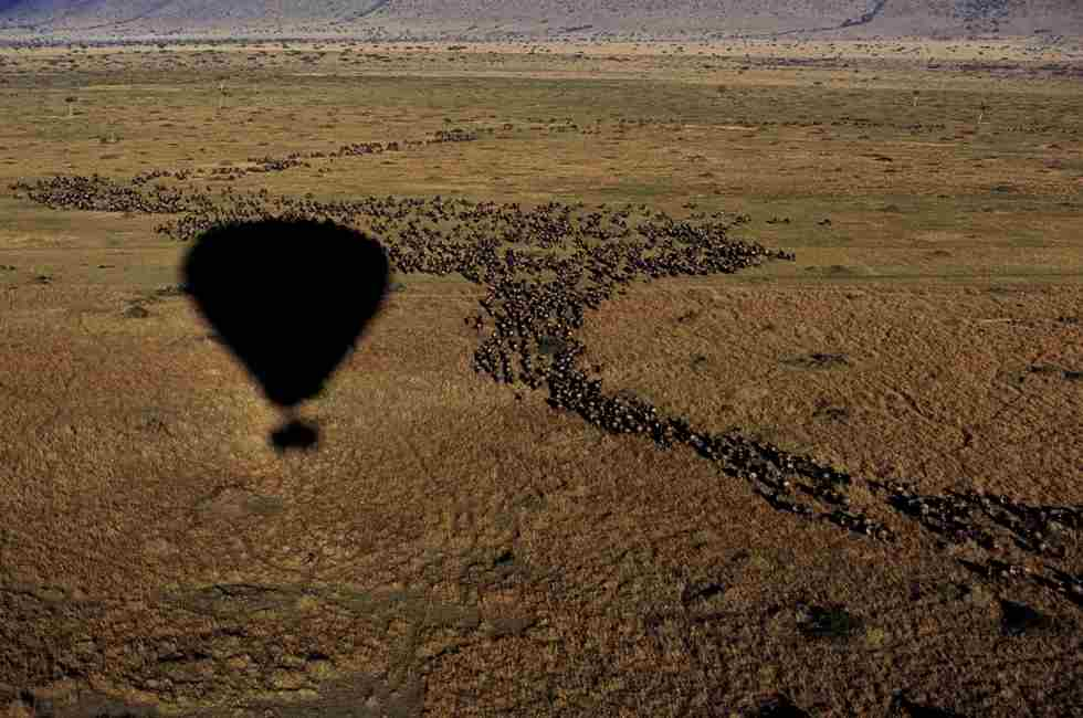 Migration from a baloon.JPG