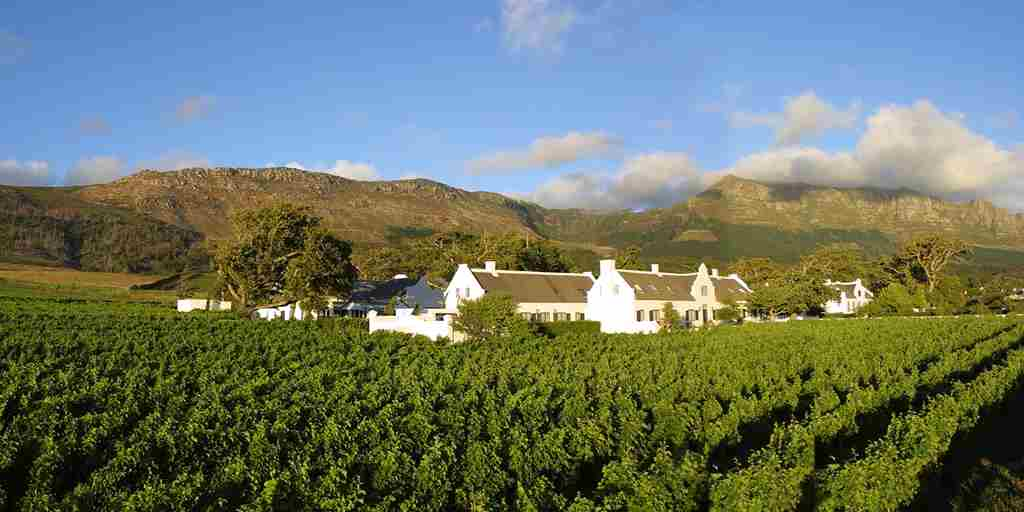 Steenberg Hotel & Vineyards.jpg