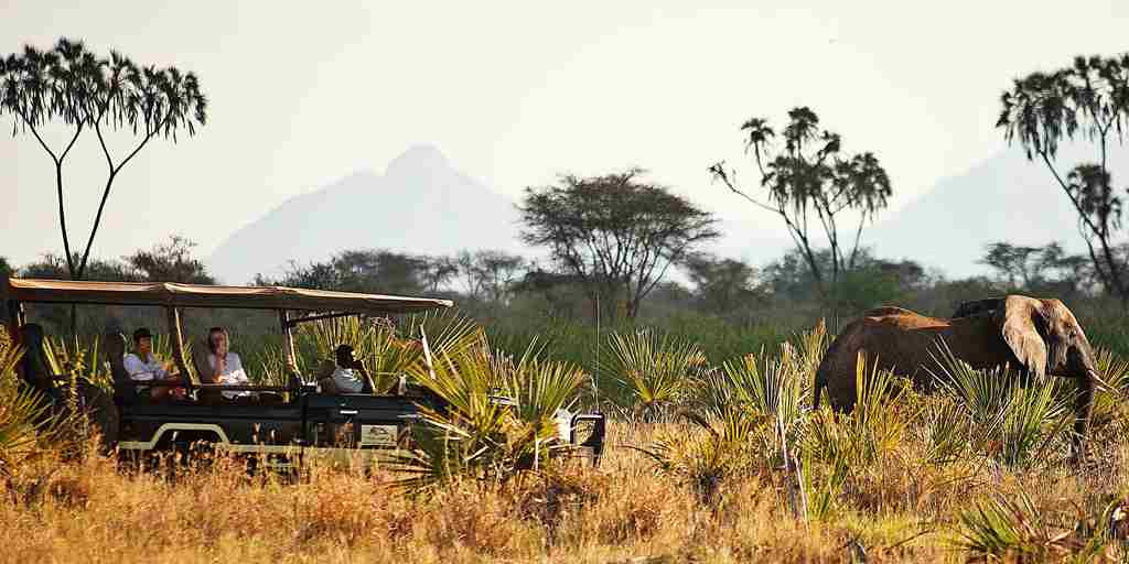 Elsa's Kopje Meru Game Drives - Elephants.jpg