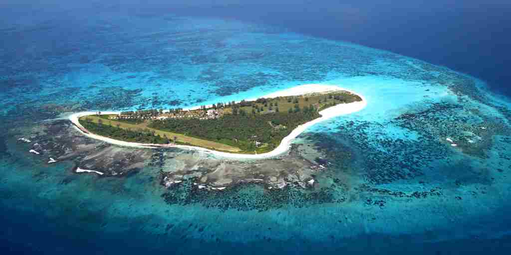 Aerial View of Bird Island.i.JPG