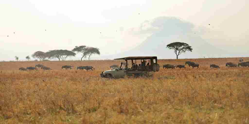 Olivers-camp-game-drives.jpg