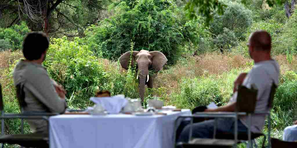 Singita-Lebombo-Lunch.jpg