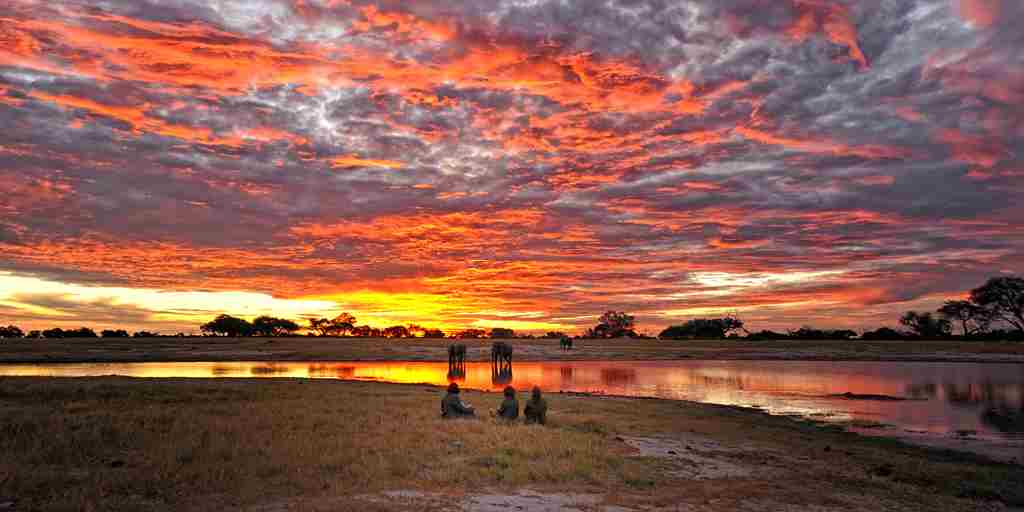 sunset_in_hwange_national_park1.jpg
