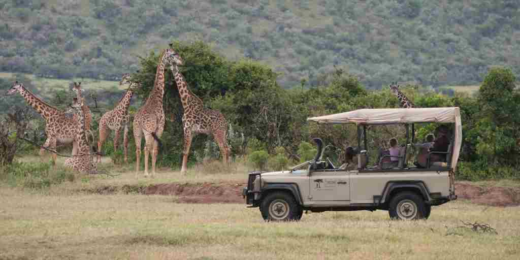 Game-drives-from-camp.jpg