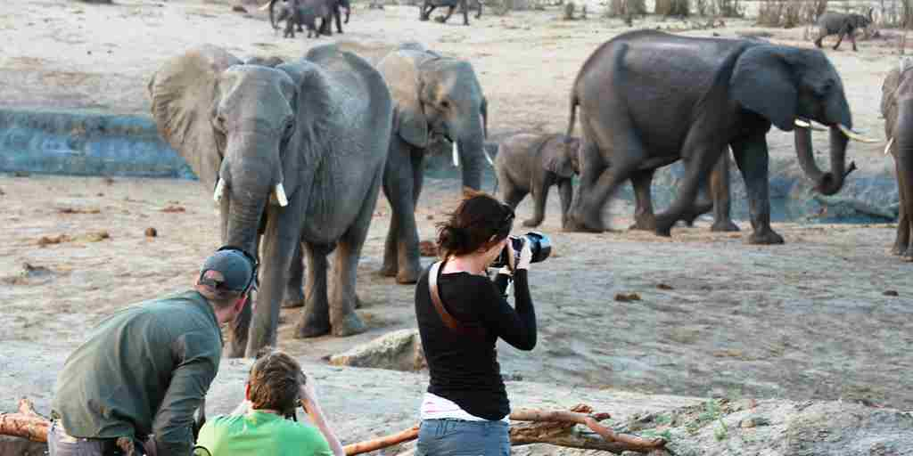 31. Imvelo Safari Lodges - Camelthorn Lodge - Evening photography at Mbazu waterhole.JPG