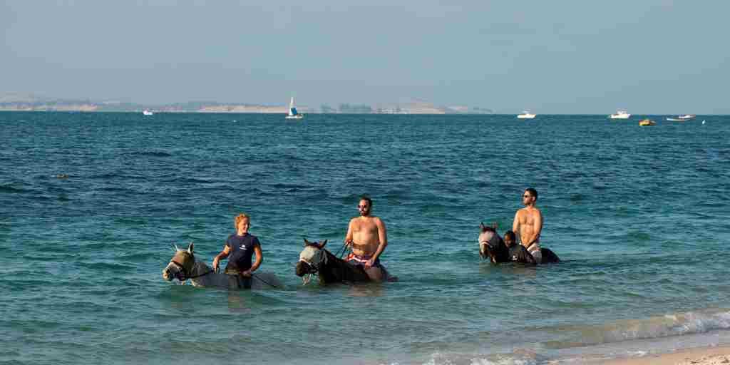 Benguerra Island Swimming With Horses