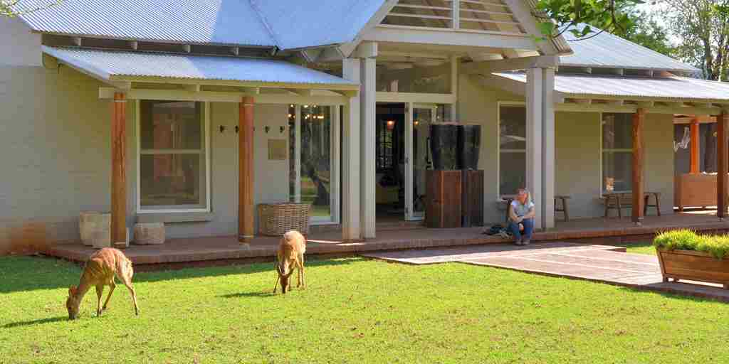 Morukuru Farm House - Nyala feeding on the lawn.JPG