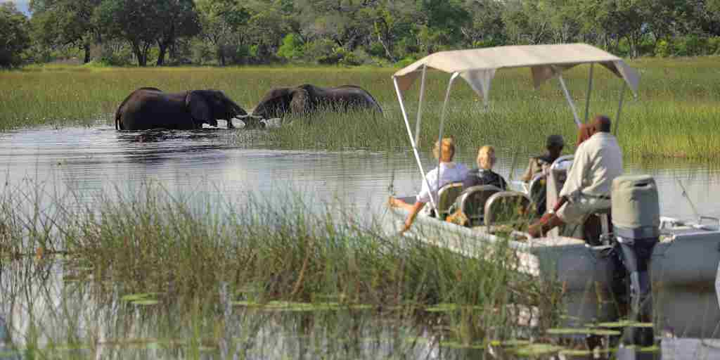 andBeyond Xudum Okavango Delta Boating Game Vieiwing3