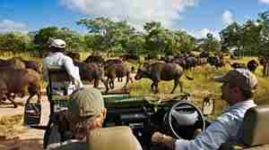 Royal Malewane Game Drive2