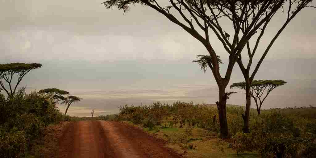 Highlands-Ngorongoro-landscape-Eliza-Deacon-HR.jpg
