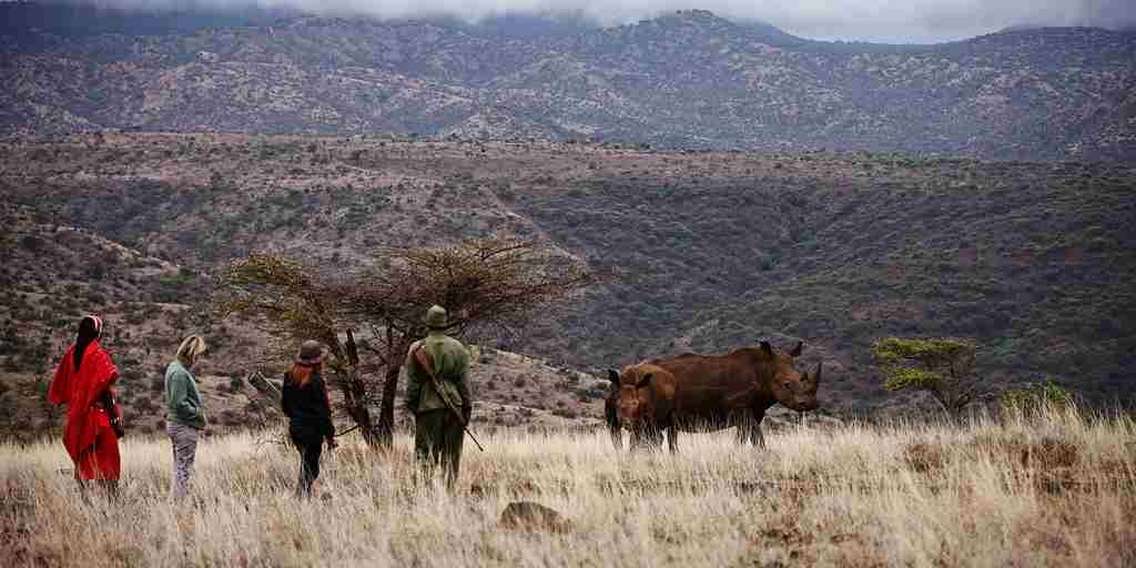 guided walks in the conservancy.jpg
