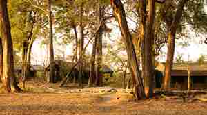 guesttents-foot-9025_hi-res.jpg