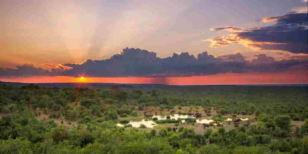 Sunset from the Buffalo Bar at Victoria Falls Safari Lodge.jpg