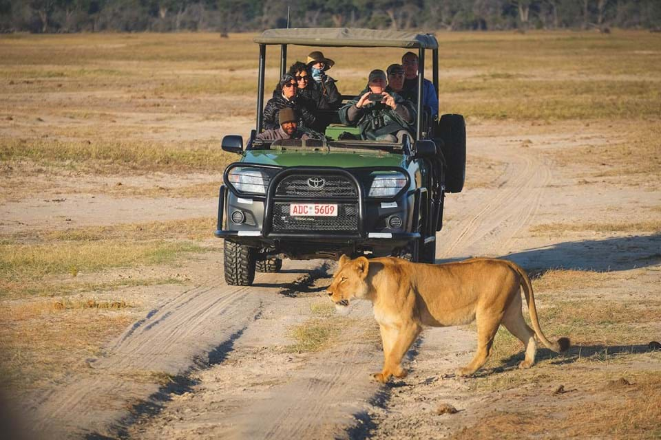 Game Drive Through Hwange Pools