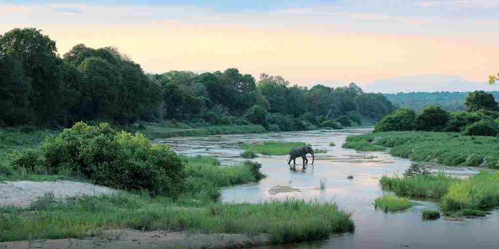 elephant-in-river-kiara.jpg