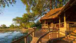 Wilderness Safaris Savuti (103)