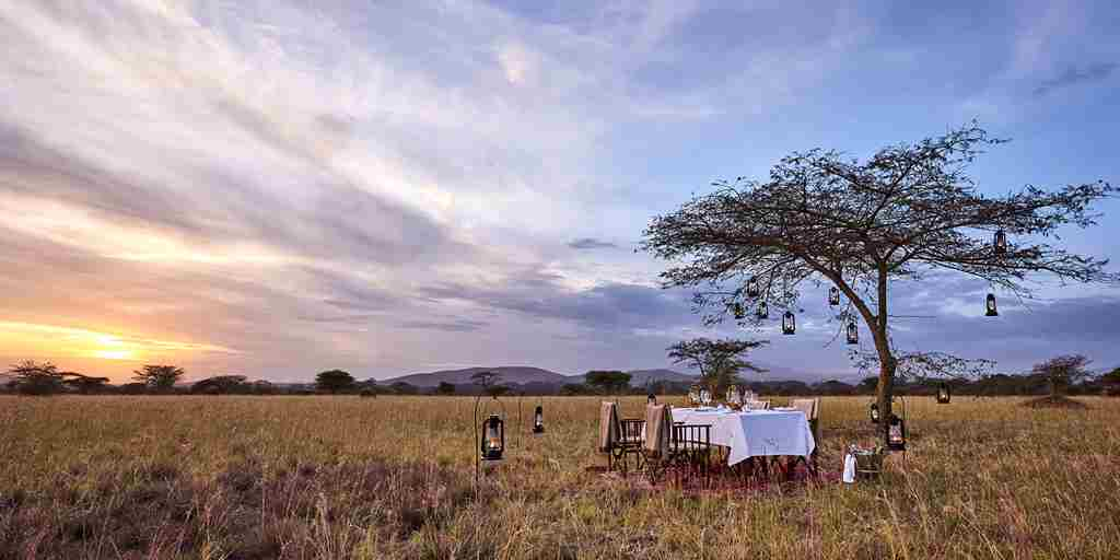 dining-under-the-African-skies.jpg