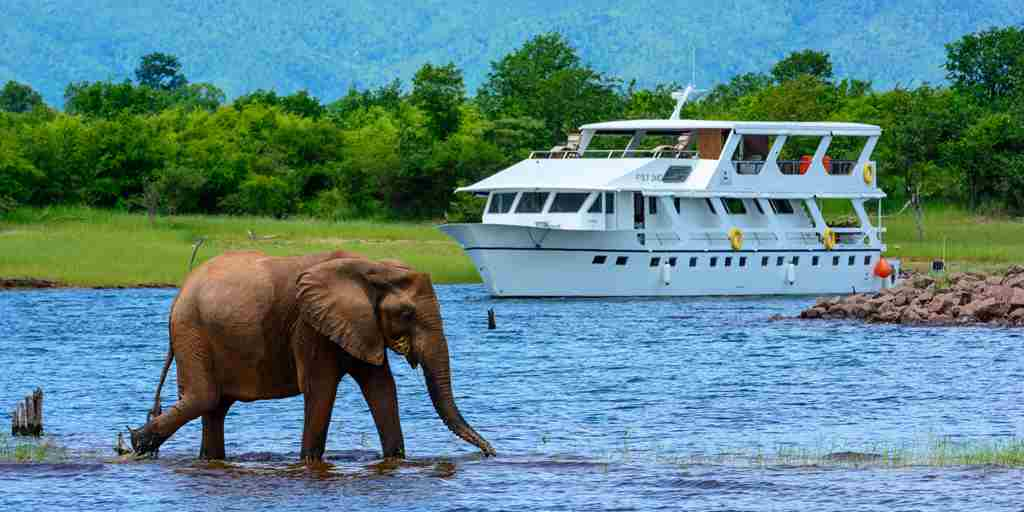 Safari-cruising-zambia.jpg