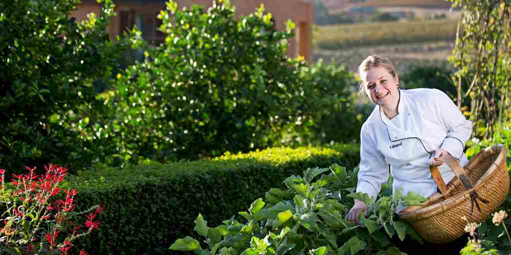 The-Royal-Portfolio-la-Residence-Chef-Selecting-Fresh-Produce.jpg