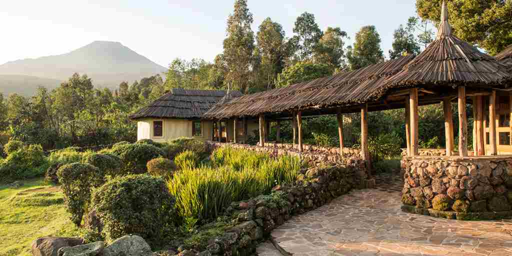 Safari-lodge-gardens.jpg