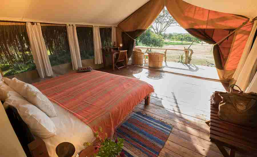 safari lodge room
