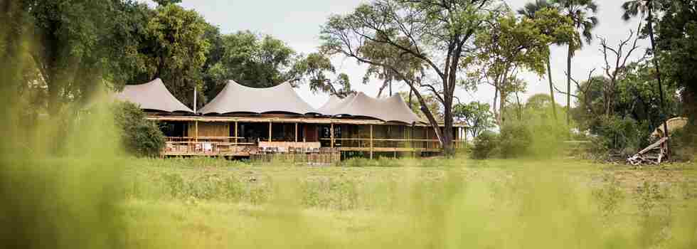 mombo-camp-botswana-yellow-zebra-safaris.jpg