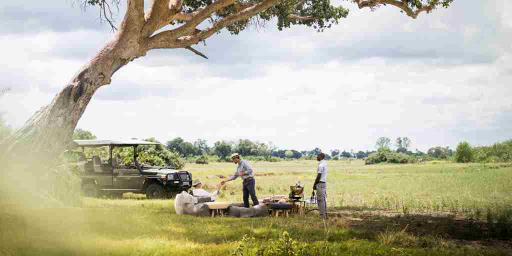 game-drive-mombo-camp-botswana-yellow-zebra-safaris.jpg