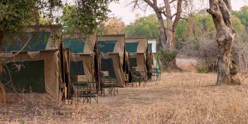 Camp chitake tents