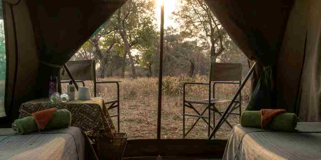 safari tent room
