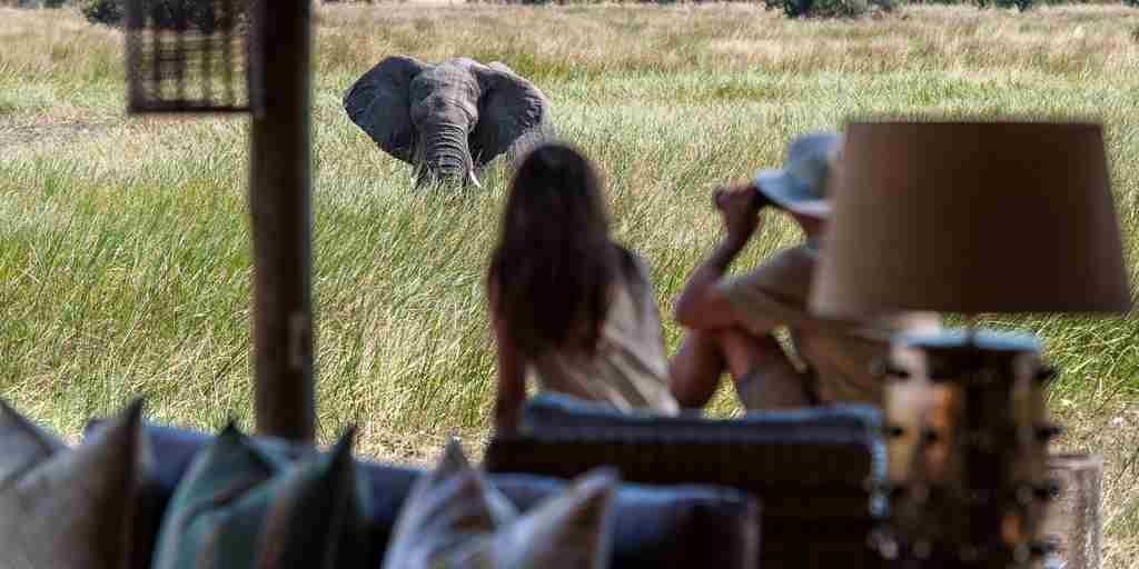 Safari-elephant-viewing.jpg