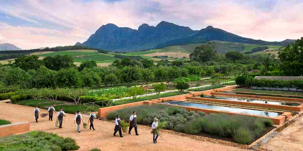 Earth Day- Babylonstoren.jpg
