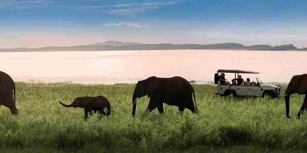 1._bumi_hills_safari_lodge_lake_kariba_zimbabwe_luxury_safari_lodge_lake_shore_game_drive_elephants__african_bush_camps_61.jpg