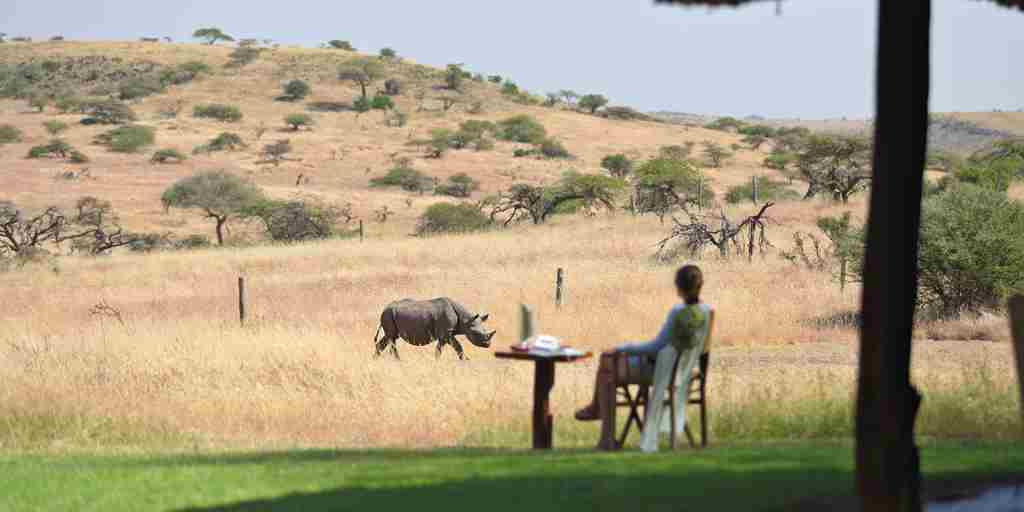 Breakfast-with-rhinos.jpg