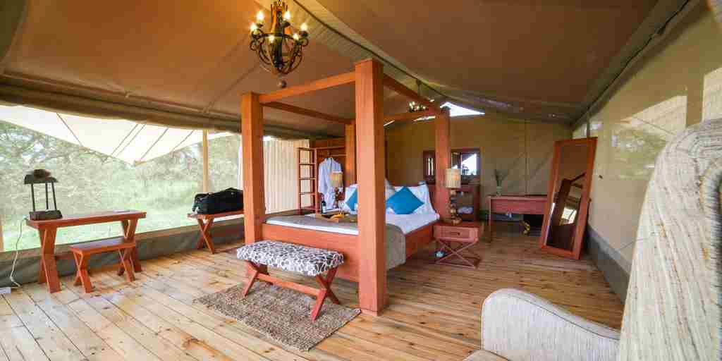 Safari-tent-luxury-room.jpg