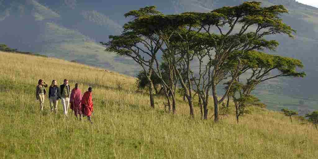 Walking safaris ngorongoro crater