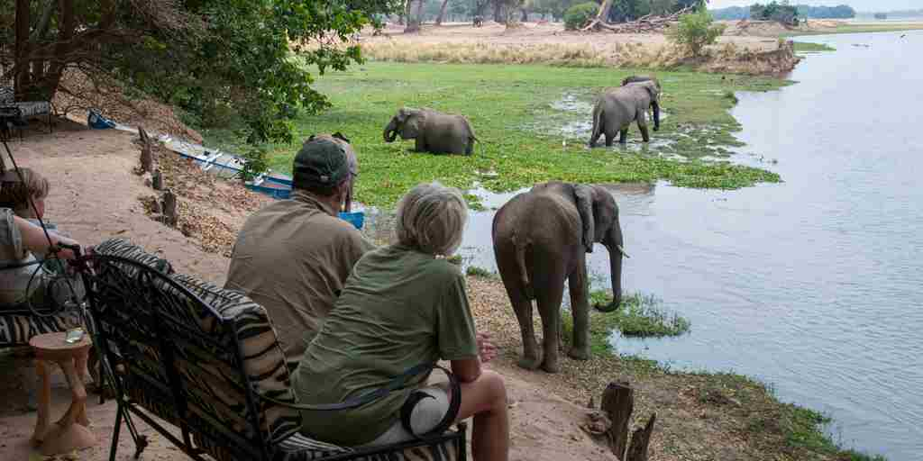 Game-view-Goliath-Safaris-Mana-Pools-Zimbabwe.jpg