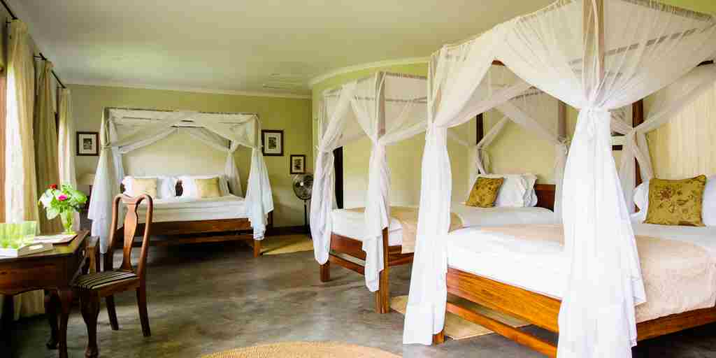 Tanzania-Lodge-bedroom-sharing.jpg
