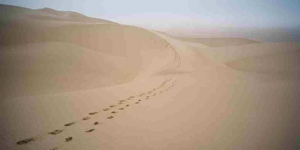 Footsteps-in-the-dunes-Namibia.jpg